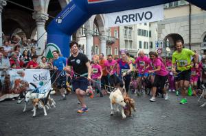 Corsa con il cane 2014  © Antonella Burello