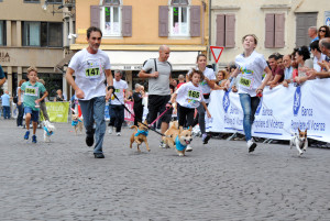 Corsa con il cane - Dog race © Elena Bertolini