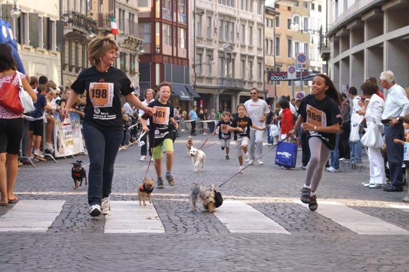 Corsa con il cane SCHESIR