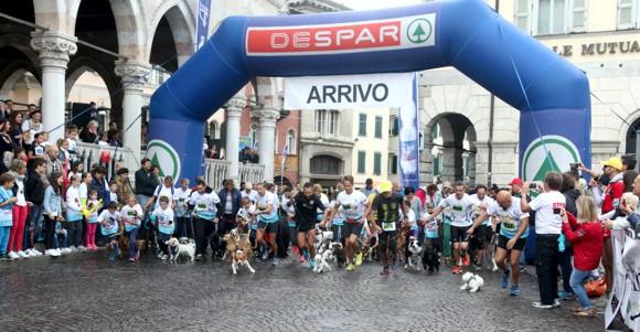 Corsa con il cane Udine